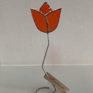 Tulpje staand oranje