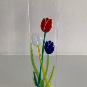 nederlandse vlag tulp