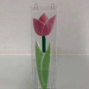 tulp1 roze